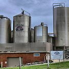 The K I Cheese Factory. by Larry Lingard-Davis