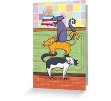 Cats Birthday Greeting Card