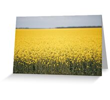 Field of canola plants Greeting Card