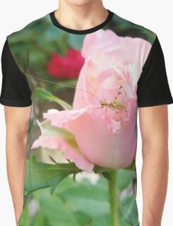 Rose Rose with bug Graphic T-Shirt