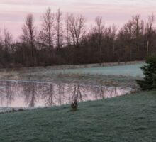 Frosty Morning - Quiet Pinks and Greens at the Pond Sticker