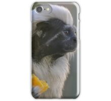 A Distant View iPhone Case/Skin
