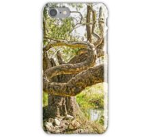 Malcolm Creek, Craigieburn iPhone Case/Skin