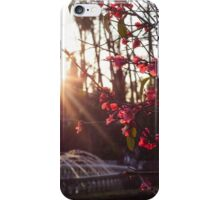 Golden Days iPhone Case/Skin