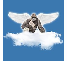 Harambe collection Photographic Print