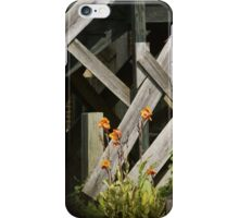 Fences at plantation iPhone Case/Skin