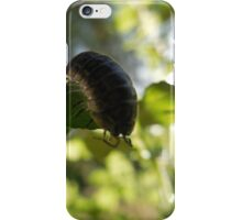rolly polly iPhone Case/Skin