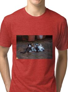Happy family  Tri-blend T-Shirt
