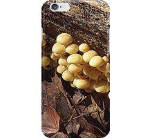 Under the Log iPhone Case/Skin