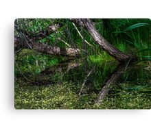 Pond Reflections of Peace and Serenity Canvas Print