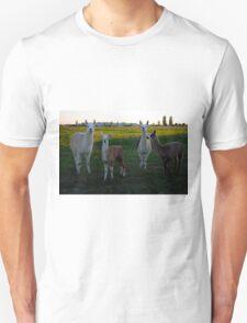 Lamas  Unisex T-Shirt