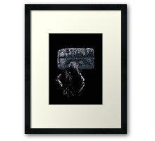Duh Rang Framed Print