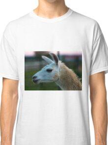 Lama  Classic T-Shirt