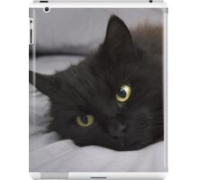 The Sleeping King iPad Case/Skin