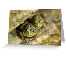 Pair of Iberian Green Frogs Greeting Card