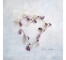 It's Love Wisteria Petals Heart Photographic Print