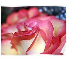 DAMAGED ROSE Poster