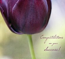 Congratulations on your success! by Astrid Ewing Photography