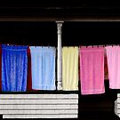 Towel Line Stark New Hampshire by Wayne King