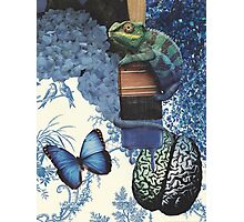 Blue Chameleon Brain Photographic Print