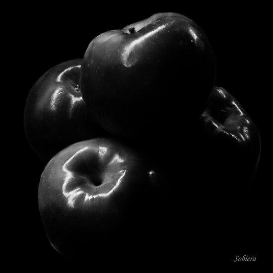 Dark Side by Rosemary Sobiera
