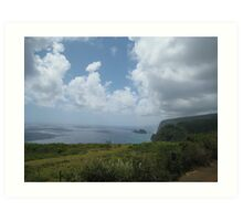 Pololu Valley lookout Art Print