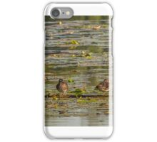 Panoramic Wood ducks iPhone Case/Skin