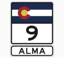 CO-9 Alma Colorado Baby Tee