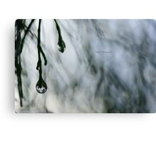 Wednesday Rain Canvas Print