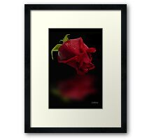 I'm just reflecting..... Framed Print