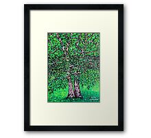 'Elm Trees' (Plein Air Painting) Framed Print