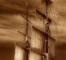 Tall Masts by Barbara  Brown