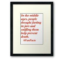 Fun Facts #3 Framed Print