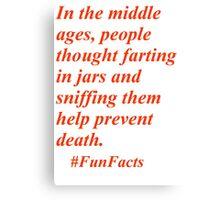 Fun Facts #3 Canvas Print