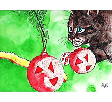 Cat Attacking Christmas Tree Photographic Print