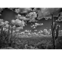 Desert Vista Photographic Print