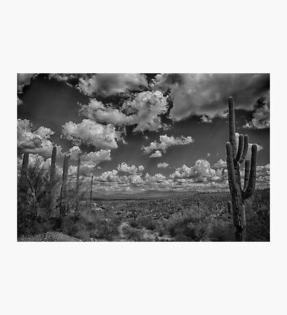 Desert Vista Photographic Print
