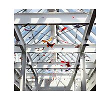 Origami Butterflies Photographic Print