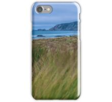 One Breezy Evening iPhone Case/Skin