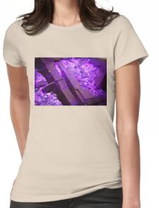 Precious Stones Womens Fitted T-Shirt