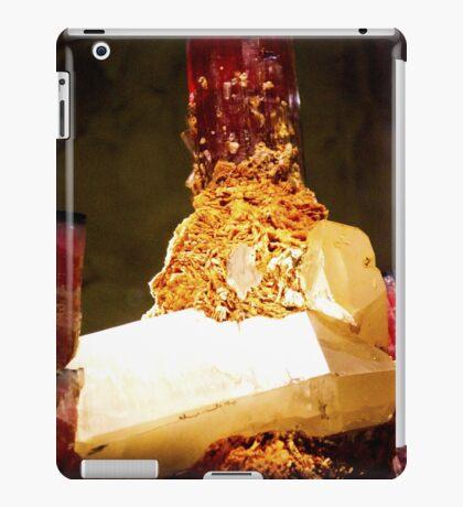 Precious Gems iPad Case/Skin