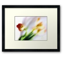 My thoughts now turn to Spring ... Framed Print