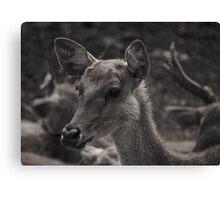Deer Heart Canvas Print