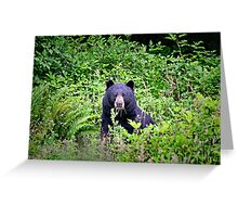 Black Bear in the Forest Greeting Card