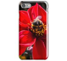 The Bumble Bee iPhone Case/Skin