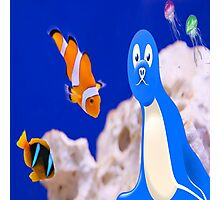 Aquarium with clown fish and friends Photographic Print
