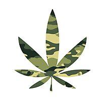 Army Leaf Photographic Print