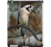 Iron Bird iPad Case/Skin