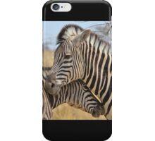 Zebra Love - Wildlife Background from Africa iPhone Case/Skin
