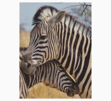 Zebra Love - Wildlife Background from Africa Kids Clothes
